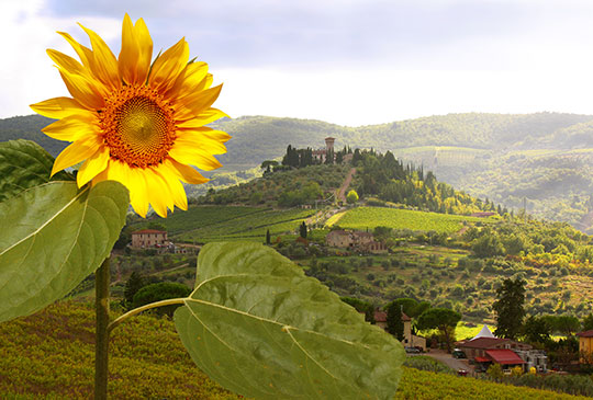 The Chianti hills, reality or painting?