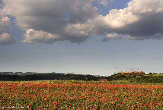 Monteriggioni, una passeggiata nella storia